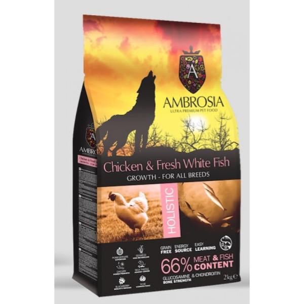AMBROSIA DOG GROWTH LB CHIC.&FRESH W FISH 12kg