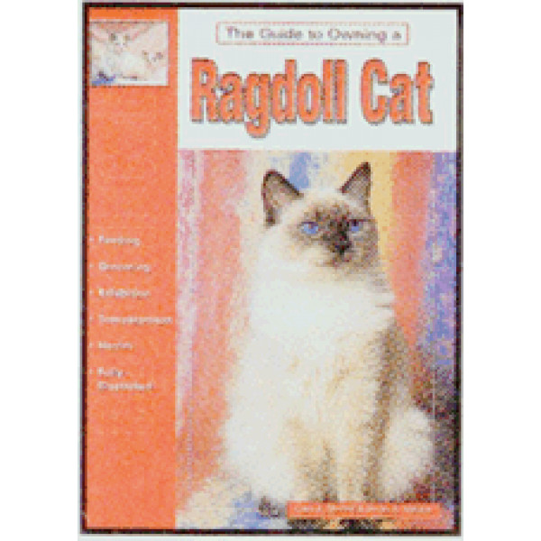 CAT-RAGDOLL-GUIDE TO OWNING A