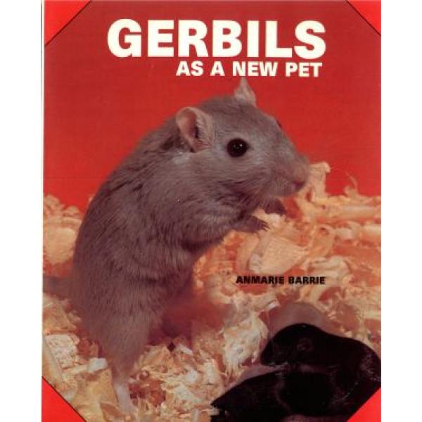 GERBILS AS A NEW PET