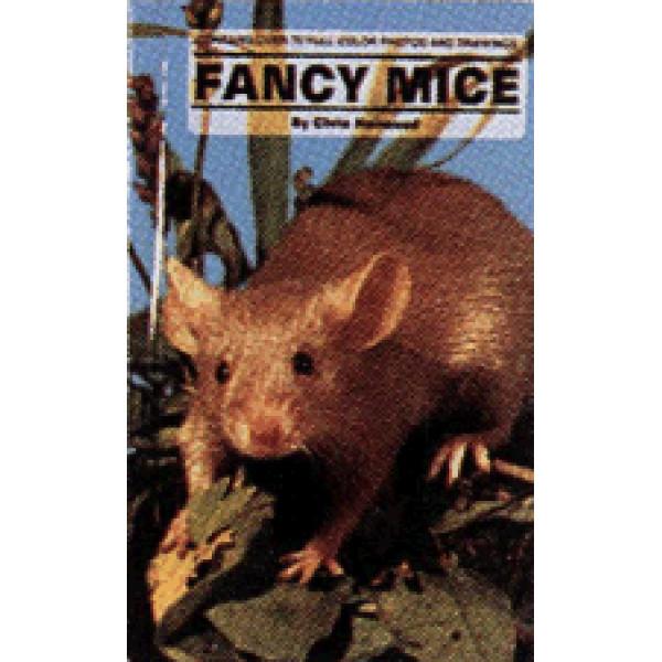 FUNCY MICE